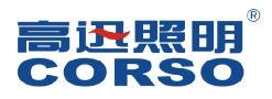 广东顺德高迅电子股份有限公司